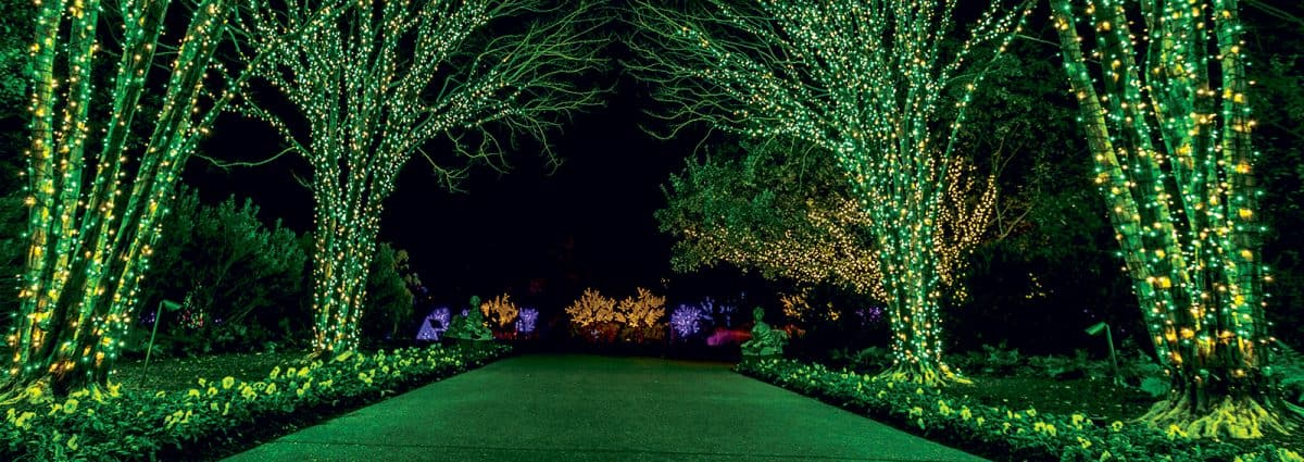 Voted The Best Event In Nashville Holiday Lights At Cheekwood