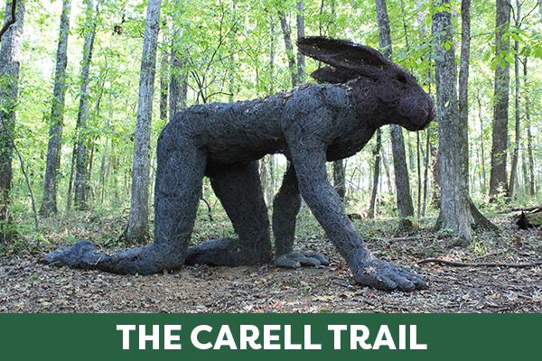 The Carell Trail