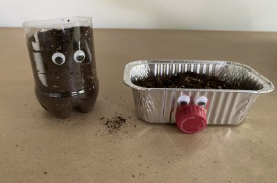 Used Container Planters Virtual Tots! Activity
