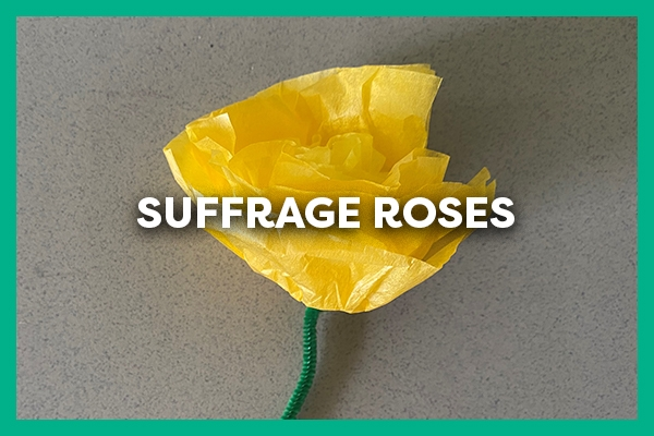 Suffrage Roses